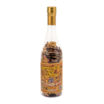Treasure Map Puzzle in a Bottle picture
