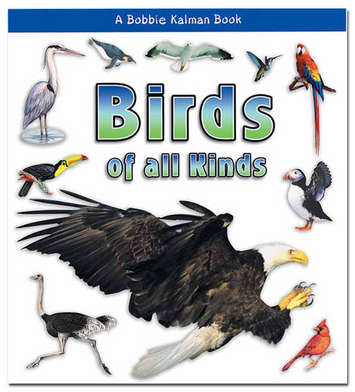 Birds Of All Kinds Softcover Book picture
