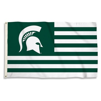 Michigan State Spartans 3 Ft. X 5 Ft. Flag W/Grommets picture
