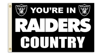 Oakland Raiders 3X5 Flag with Grommetts picture