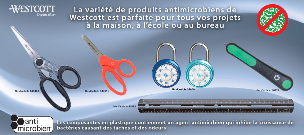 AM Items French