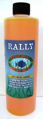 Rally - 16 oz. picture
